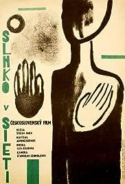 Slnko v sieti Poster