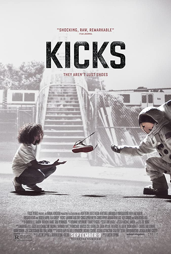 Kicks 2016 Dual Audio Full Movie 880MB