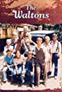 The Waltons (1971) Poster