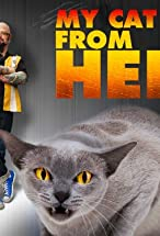 Primary image for My Cat from Hell