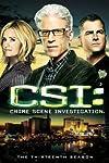 'CSI' Farewell Panel Talks How DNA, Hair Fibers & Plushies Changed TV & Society