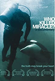 Who Killed Miracle? Poster