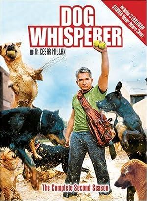 Dog Whisperer with Cesar Millan film Poster