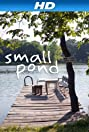 Small Pond (2011) Poster
