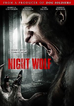 Night Wolf poster