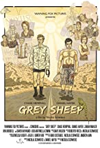 Primary image for Grey Sheep