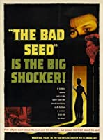 The gallery for --> The Bad Seed 1985