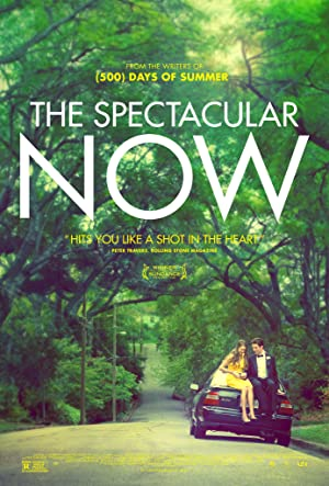 Picture of The Spectacular Now