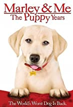 Primary image for Marley & Me: The Puppy Years
