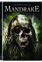 Primary image for Mandrake
