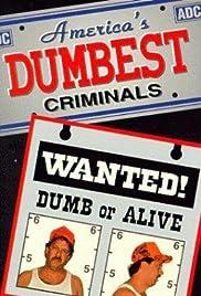 America's Dumbest Criminals Poster