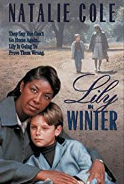 Lily in Winter(1994) Poster - Movie Forum, Cast, Reviews