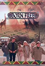 Primary image for Born Free