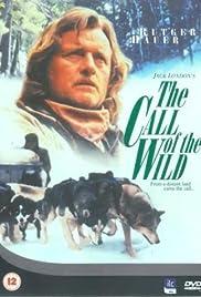 the call of the wild dog of the yukon tv movie 1997 imdb