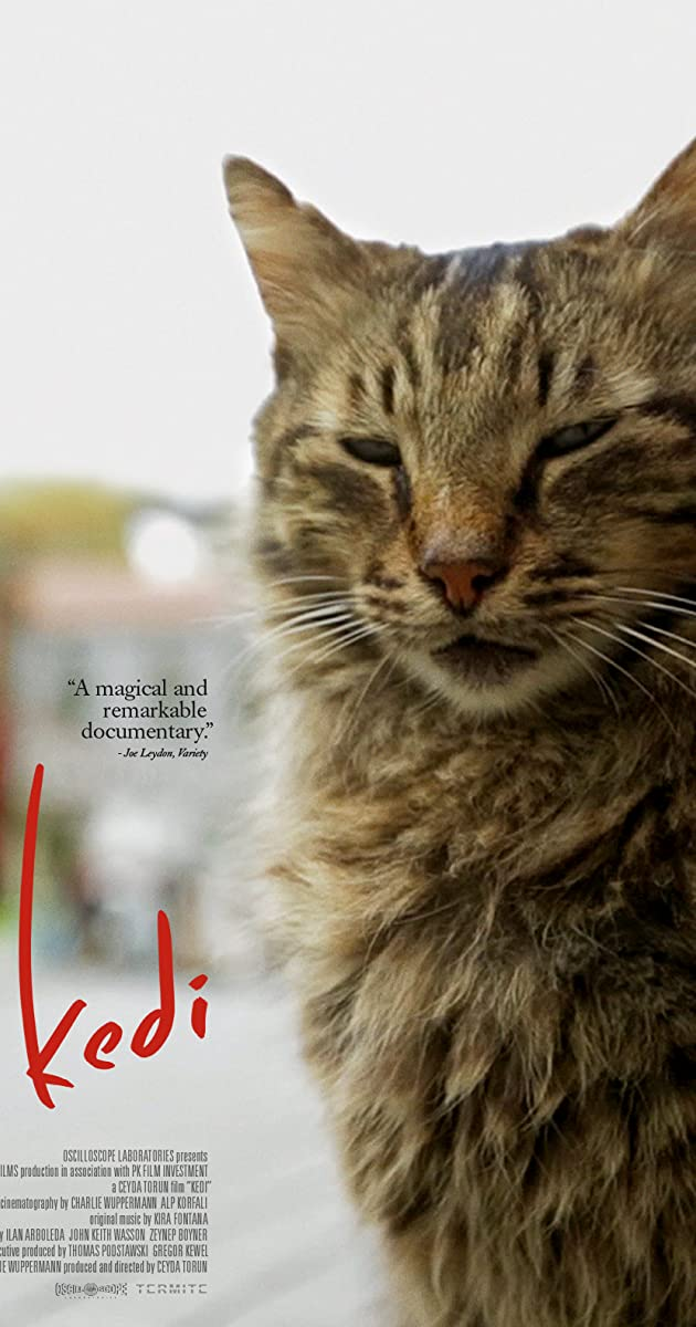 List Of Cat Names From Movies