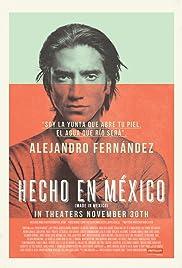 Hecho en México Poster
