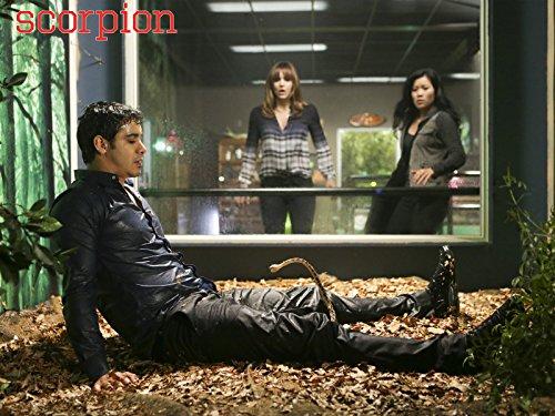Scorpion: Once Bitten, Twice Die | Season 1 | Episode 18