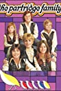 The Partridge Family (1970) Poster
