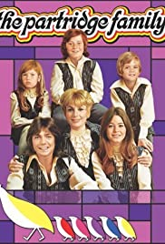 The Partridge Family Poster