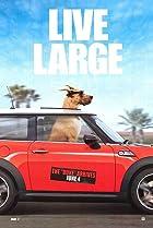 Marmaduke (2010) Poster