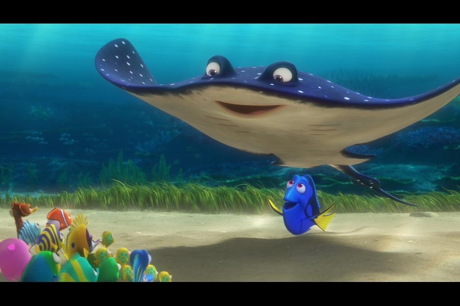 Dory Fish Quotes 61455 Usbdata