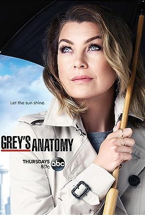 Greys Anatomy Temporada 12 Online