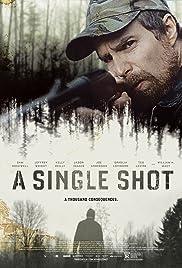 A Single Shot Poster