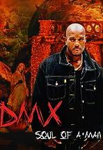 DMX: Soul of a Man