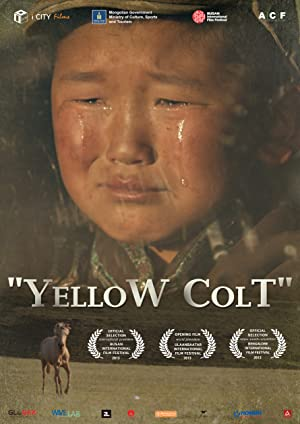 Yellow Colt Poster