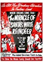 The Miracle of the White Reindeer