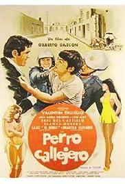 Perro callejero(1980) Poster - Movie Forum, Cast, Reviews