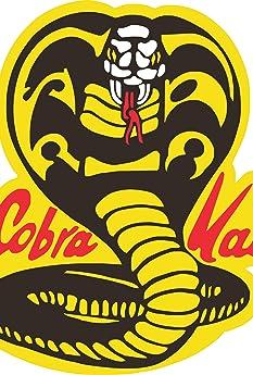 Cobra Kai (2018-)