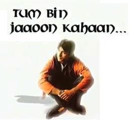 Watch Tum Bin Jaaoon Kahaan Online