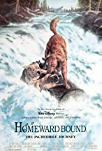 Primary image for Homeward Bound: The Incredible Journey