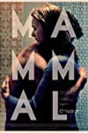 Film Review: 'Mammal'