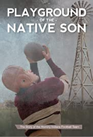 Playground of the Native Son Poster