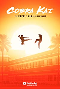 Now living in the affluent hills of Encino, Daniel LaRusso (Ralph Macchio) leads an enviable life with his beautiful family, while running a successful string of car dealerships throughout the valley. Meanwhile, his high school adversary, Johnny Lawrence (William Zabka), whose life has taken a rocky turn, seeks redemption by reopening the infamous Cobra Kai karate dojo.