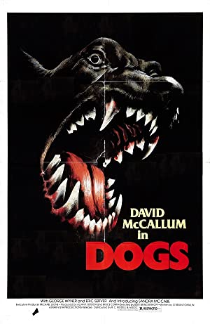 Dogs (1976)