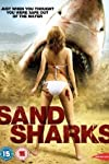 Afm '11: See Brooke Hogan in 'Sand Sharks' Trailer!