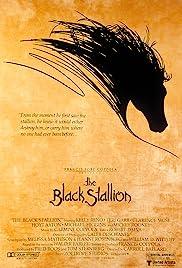 The Black Stallion Poster