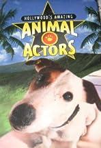 Hollywood's Amazing Animal Actors