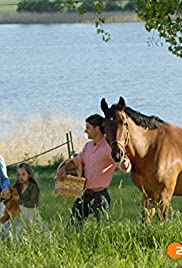 Die Pferde von Katarinaberg Poster