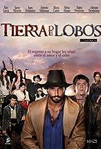 Primary image for Tierra de lobos