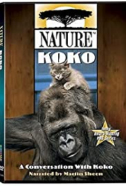 A Conversation with Koko Poster