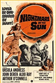 Nightmare in the Sun Poster