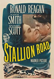 Stallion Road Poster