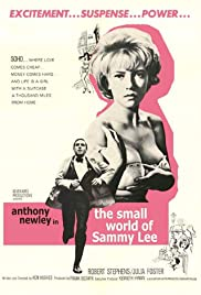 The Small World of Sammy Lee Poster