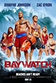Dwayne Johnson, Alexandra Daddario, Zac Efron, Ilfenesh Hadera, Jon Bass, and Kelly Rohrbach in Baywatch (2017)