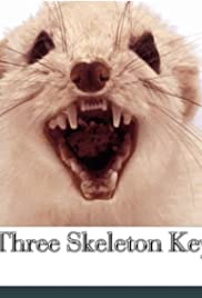 Three skeleton key 2014 imdb three skeleton key poster ccuart Image collections