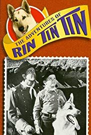 Rin Tin Tin Meets Shakespeare Poster